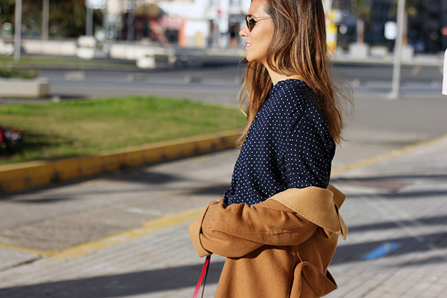 azul_camel_coohuco7